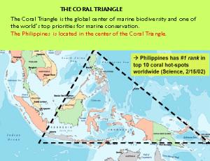 coraltriangle
